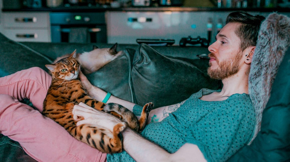 man relaxing with cats