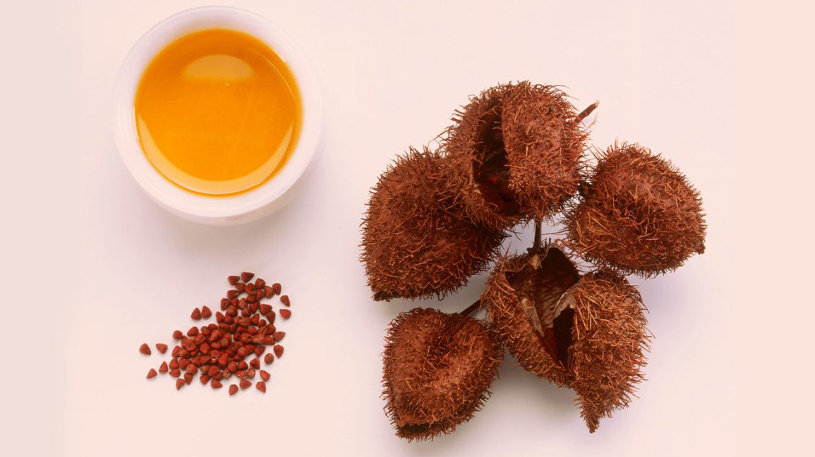 What Is Annatto? Uses, Benefits, and Side Effects