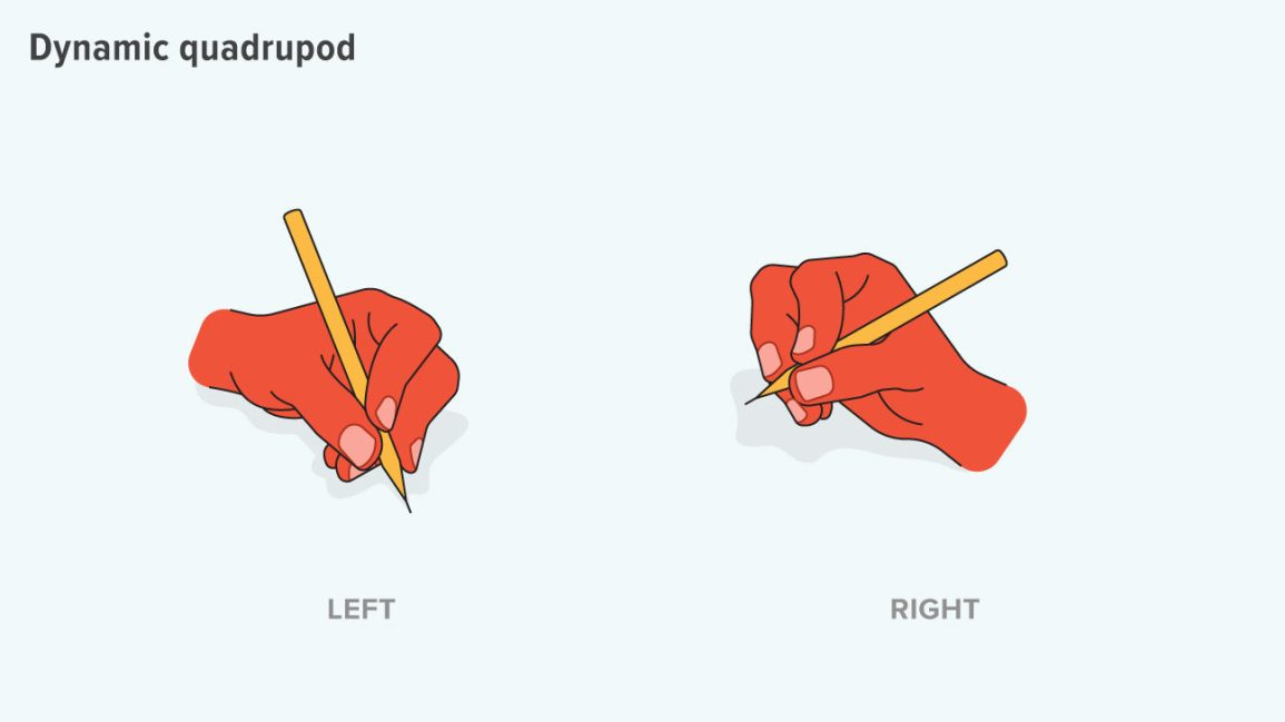 dynamic quadrupod grip uses the thumb to help direct the pencil