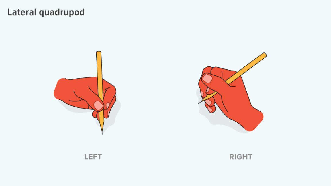 lateral quadrupod grip uses the thumb to help stabilize the pencil