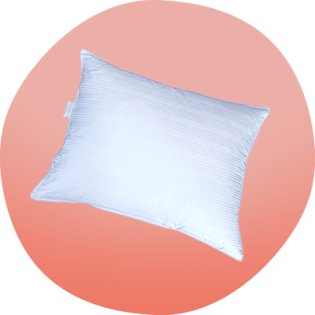 Picture of DOWNLITE extra soft down pillow