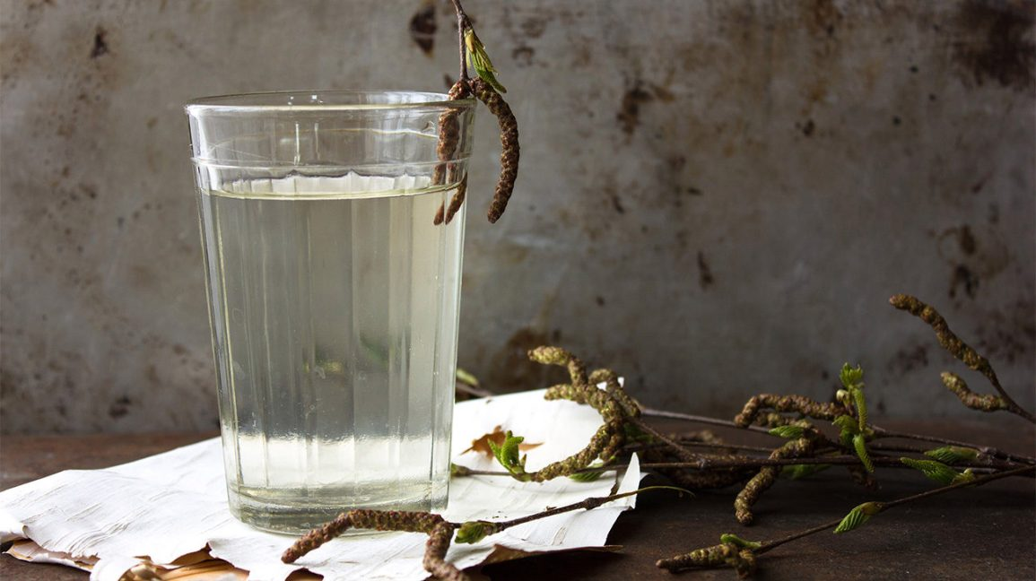 A glass of birch water