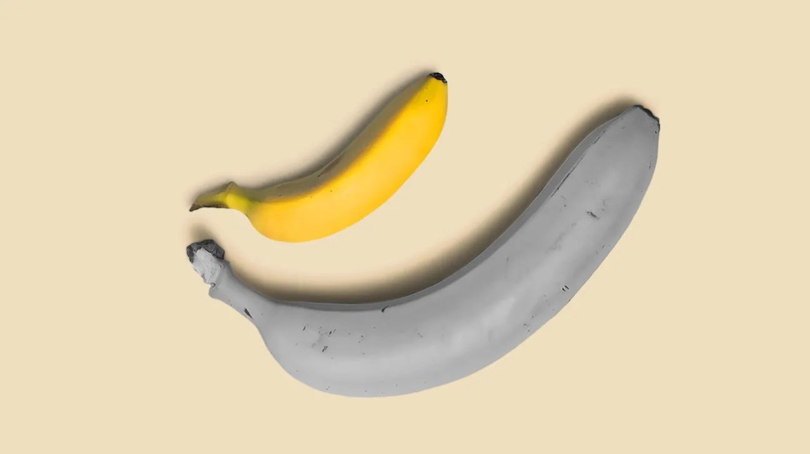 Small banana next to an average-sized banana to represent variance in penis or dildo size