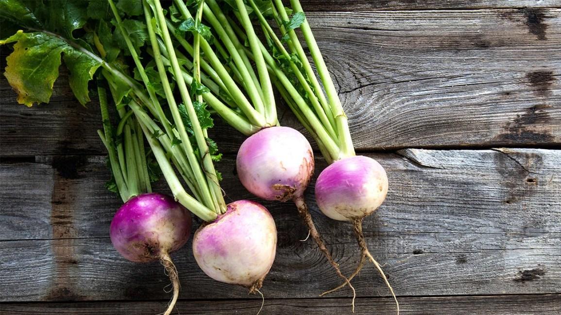 Turnip,nari