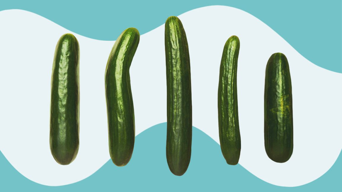 row of five cucumbers of varying length and girth set against a white background with a light blue border