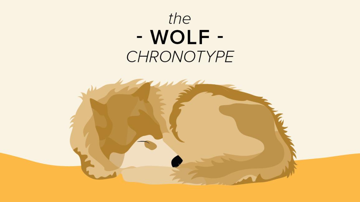 wolf chronotype