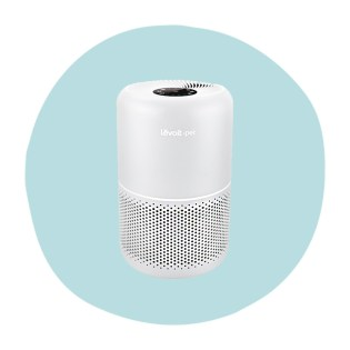Best Air Purifiers For Pets Allergies Smoke And Mold,Lilly Pulitzer And Starbucks