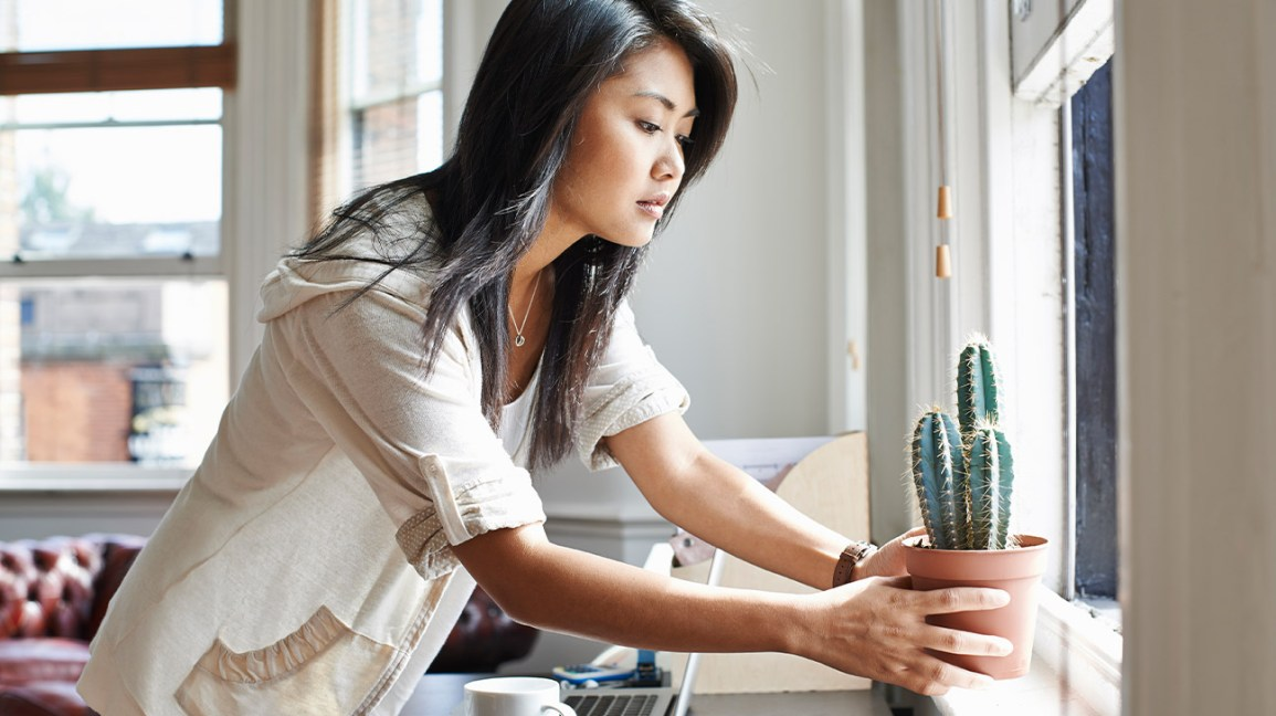 A woman setting a potted cactus on a sunlit windowsill above her work desk at home