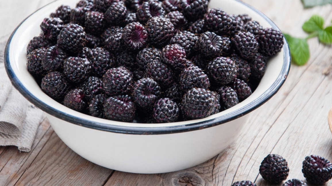 A bowl of black raspberries