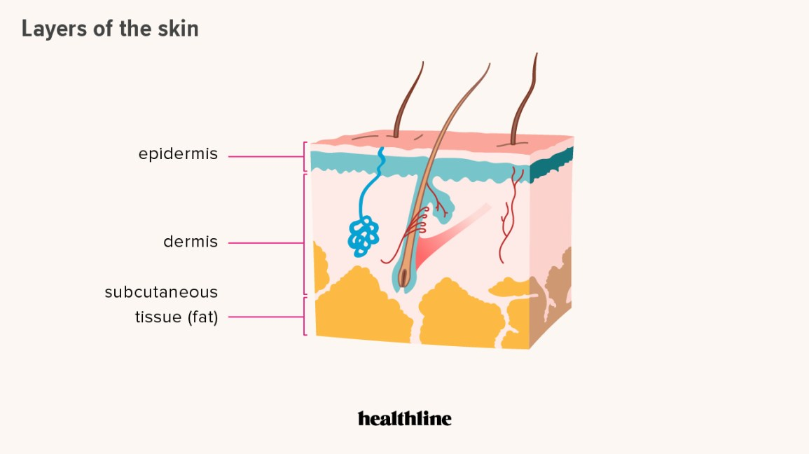 Skin Cancer Prevention Ways To Reduce Your Risk