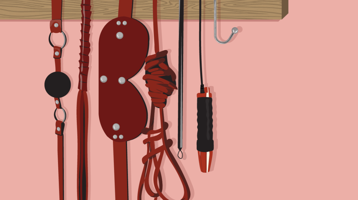 illustration of a muted pink wall with a wooden rack hanging a red and black ball gag, red leather flogger, red blindfold, red shibari rope, red and black electric wand, and silver anal hook