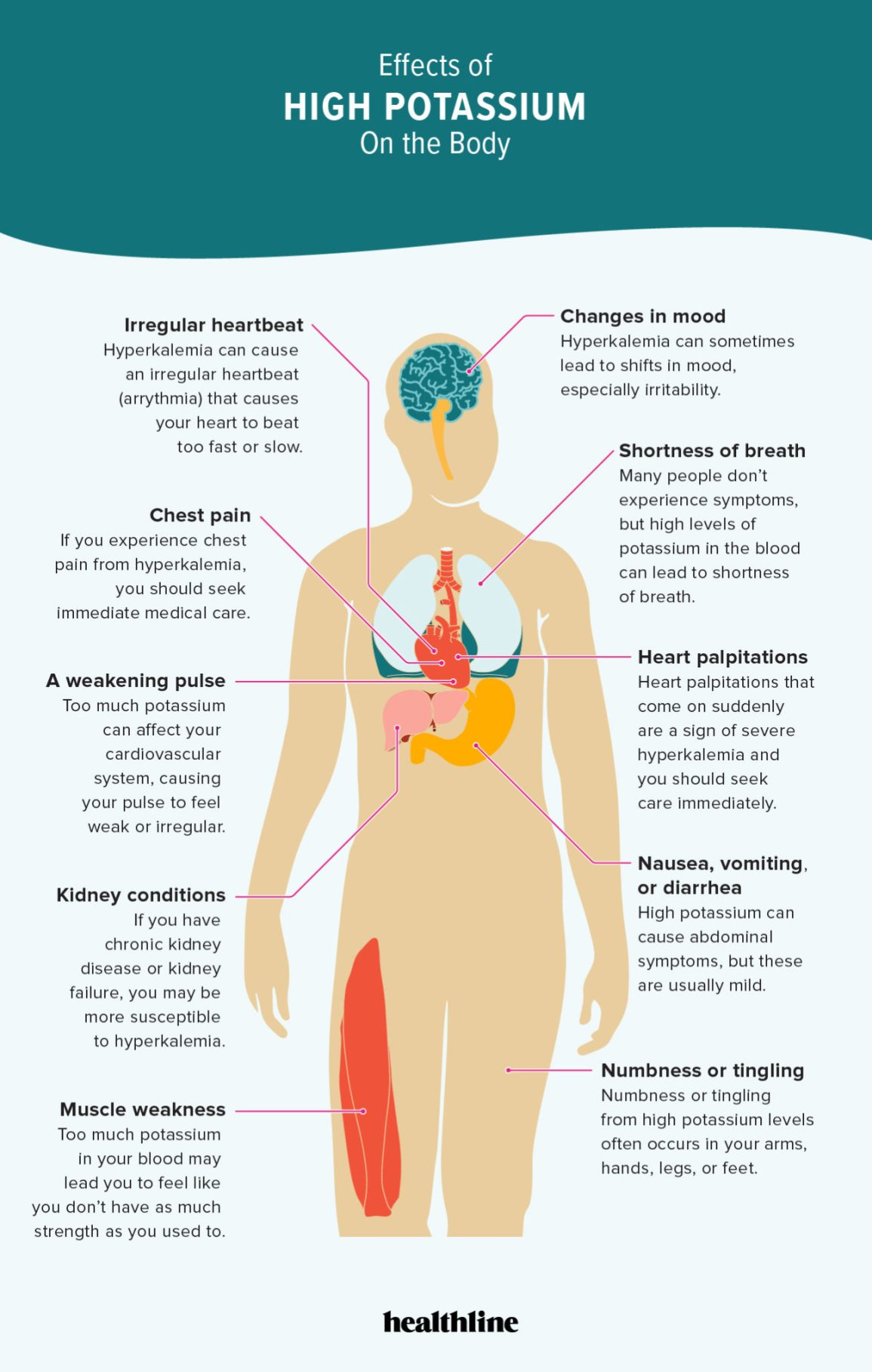 10 Effects Of Hyperkalemia On The Body