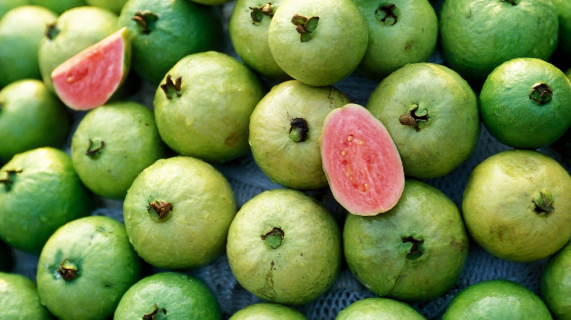 One sliced guava with many unsliced guava fruits