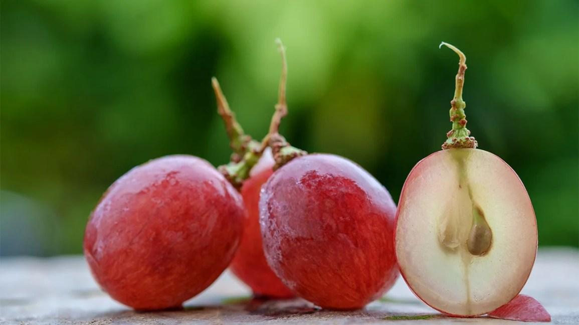 Uvas mais uma uva aberta com sementes