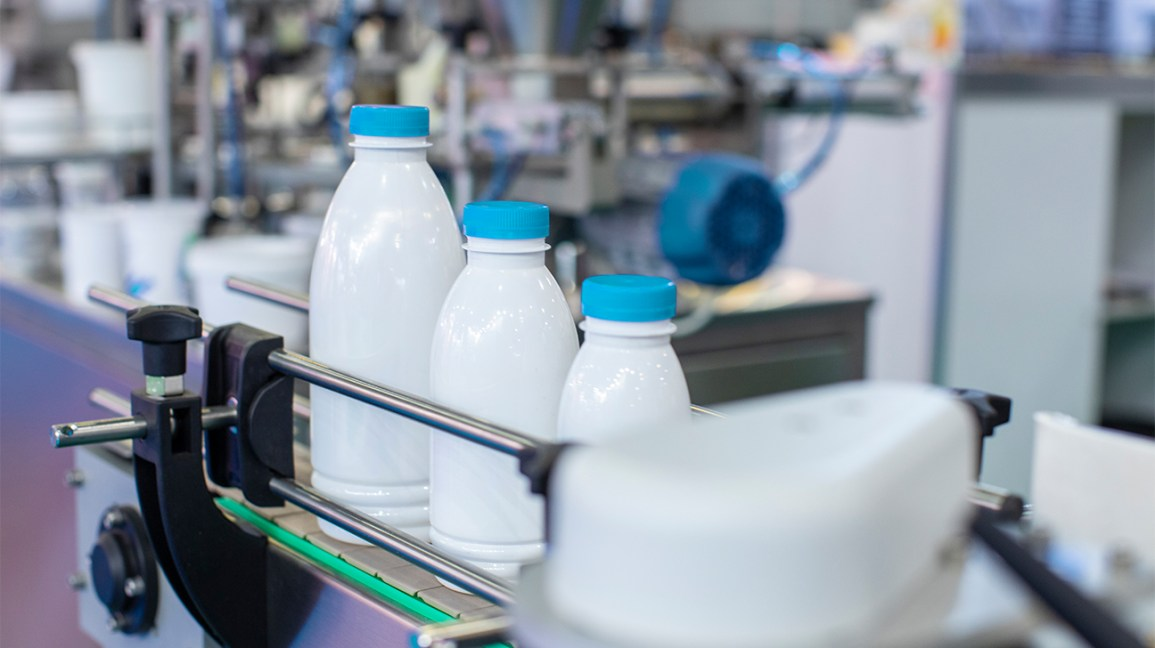 milk bottles on a production line