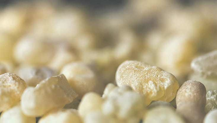 5 Benefits And Uses Of Frankincense And 7 Myths