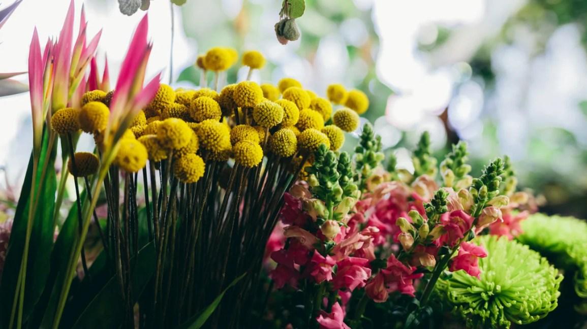 Una varietà di diversi fiori colorati raggruppati insieme.