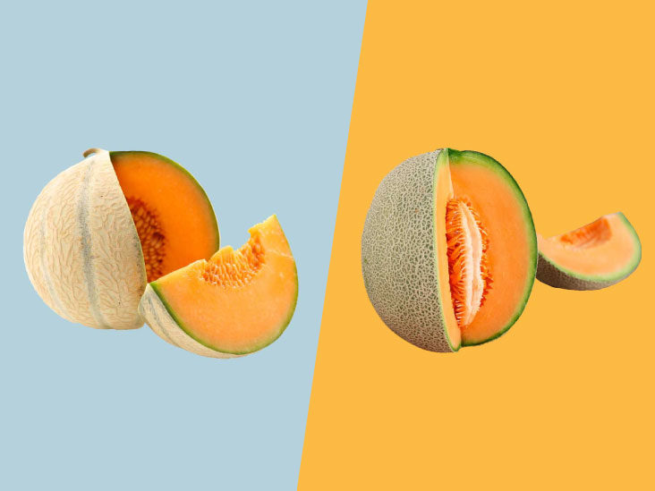 Honeydew Vs Cantaloupe What S The Difference This link opens in a new window. honeydew vs cantaloupe what s the