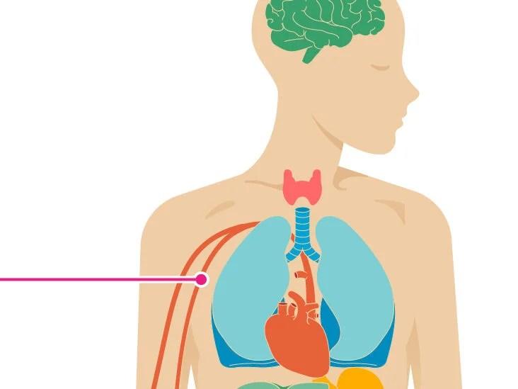 have high cholesterol change diet felt dizzy