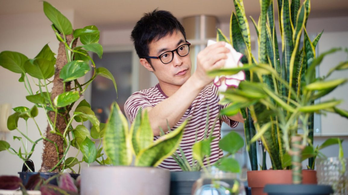 person enjoying the benefits of indoor plants