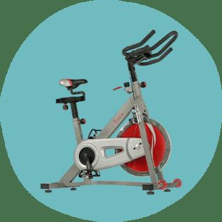 Sunny SF-B1995 Fitness Pro II
