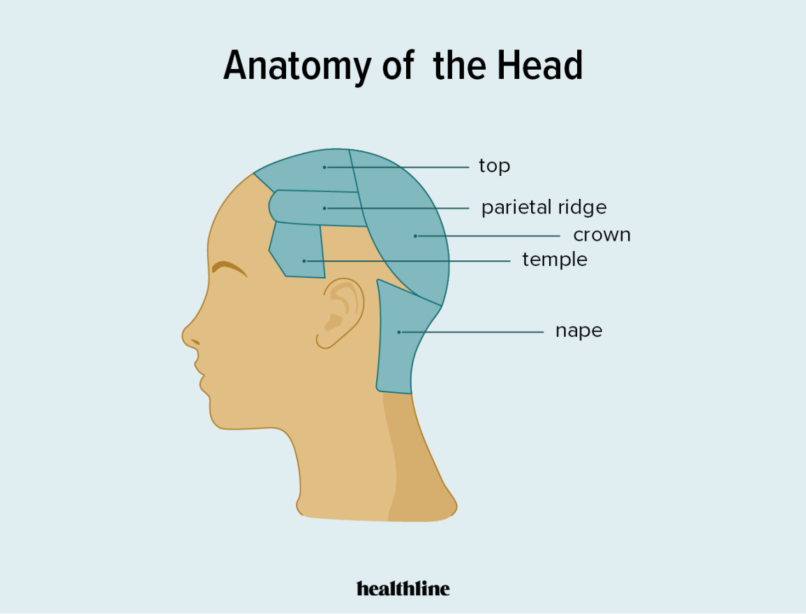 Crown of Head Conditions, Injuries, and More