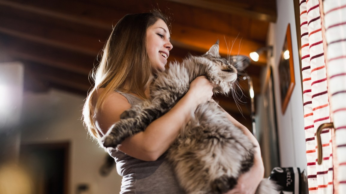 Pregnant person holding large cat
