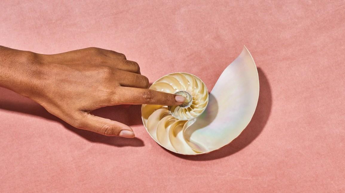 imagem sugestiva de um dedo tocando o interior de uma concha do mar