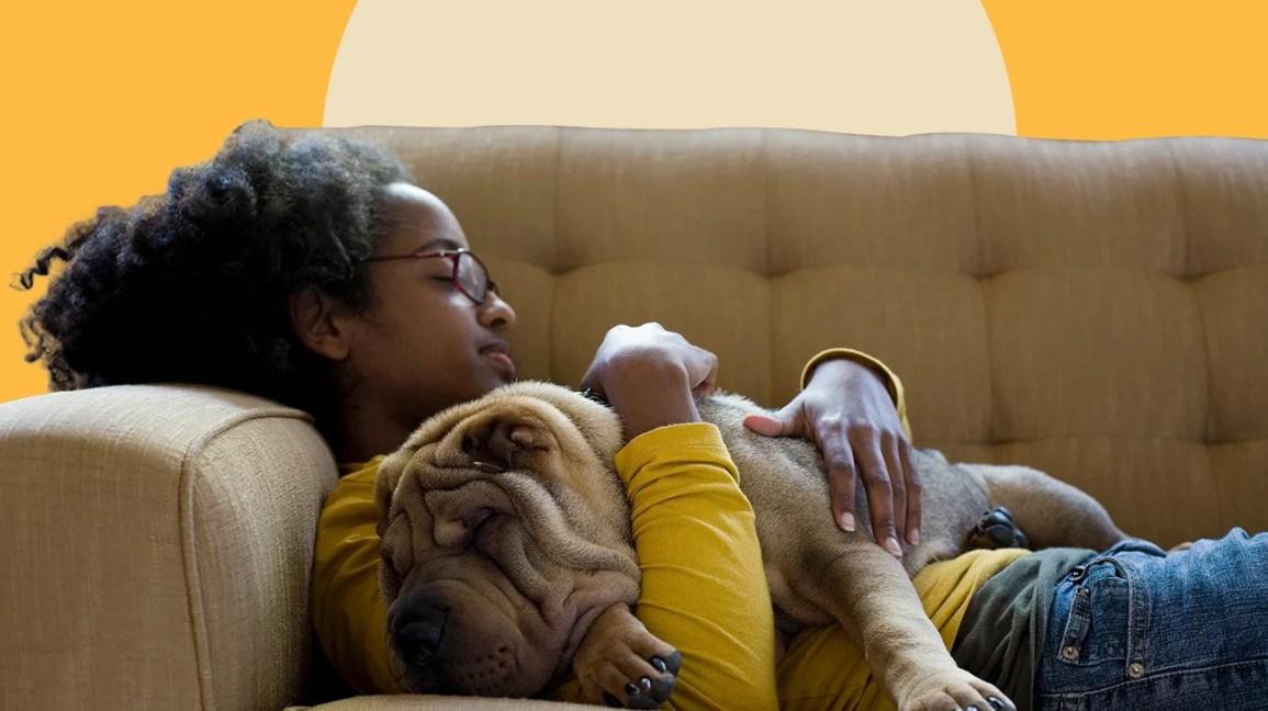Köpeğini tutan kanepede döşeme kadın