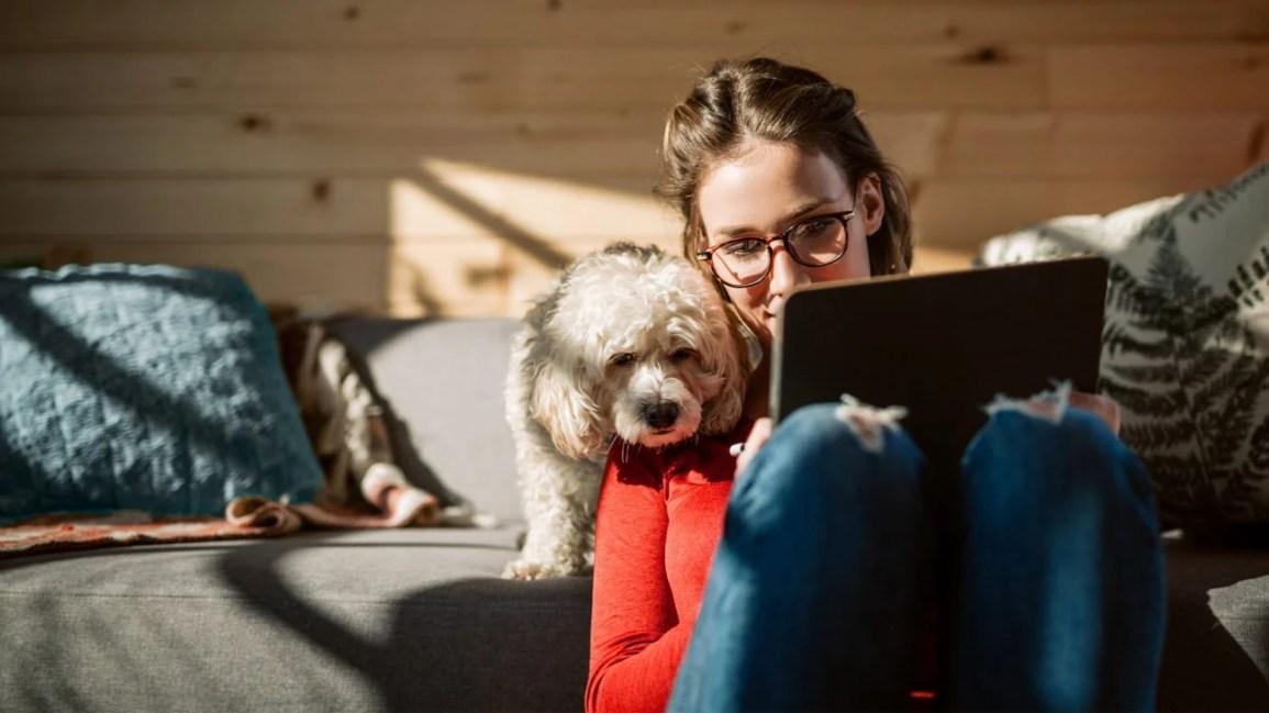 Köpekli kadın tablette XLH'yi araştırıyor