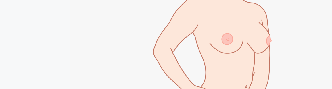 A diagram of Round breast shape