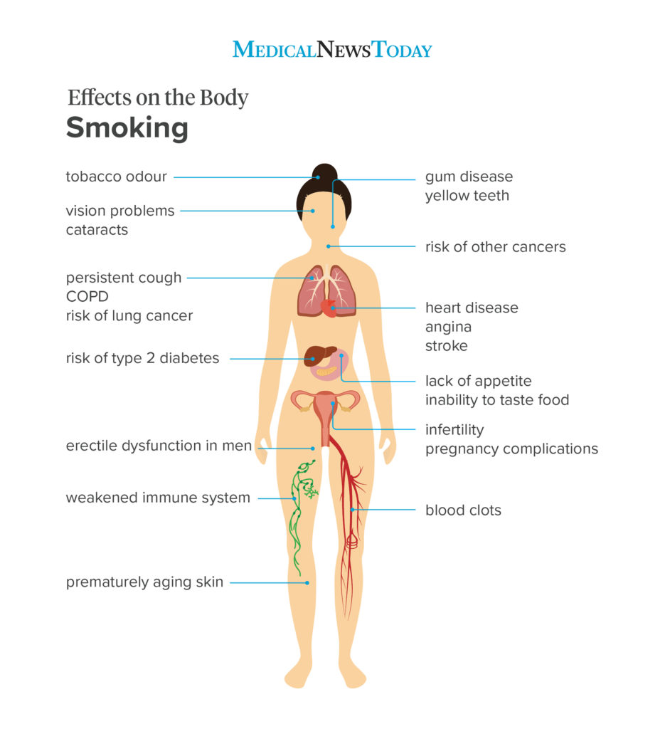 infographic showing the effects of smoking on the body