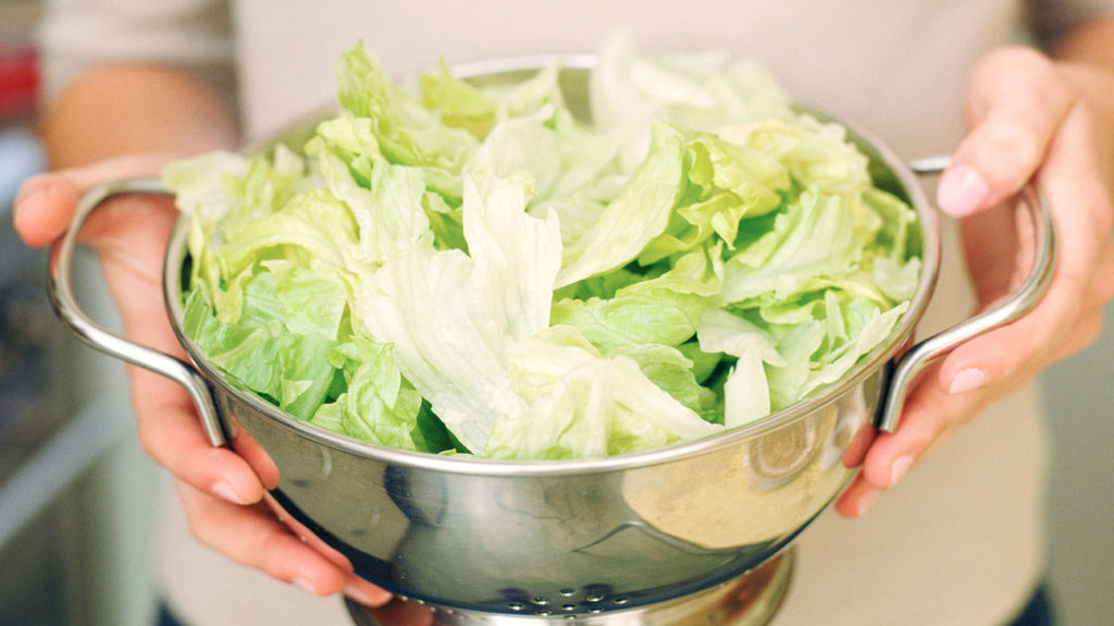 a person holding a colander containing iceberg lettuce