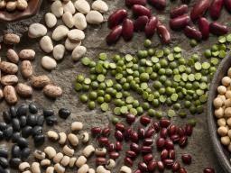 dietary fibre role in the body