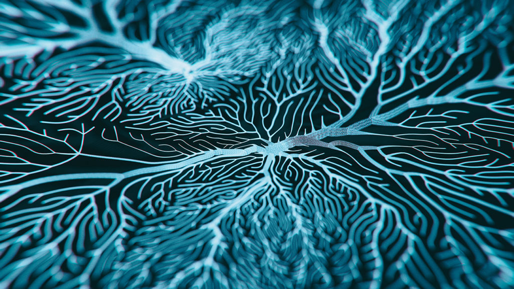 an abstract image of nerves in the brain where catecholamines are carried through the body
