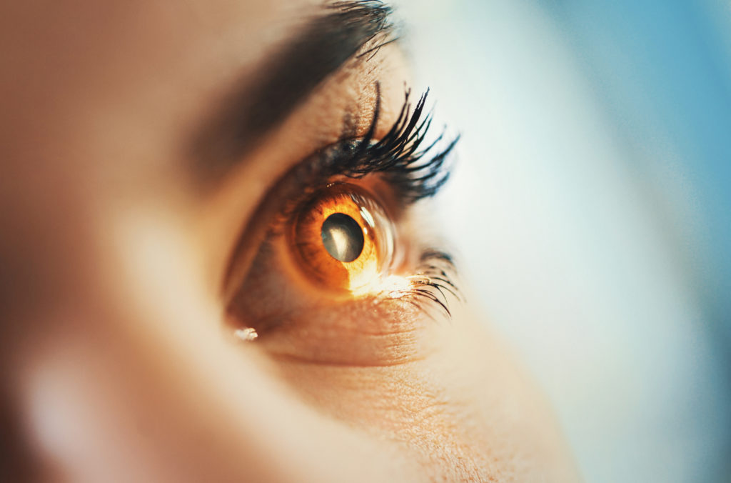 close up of a woman's eye examined with light