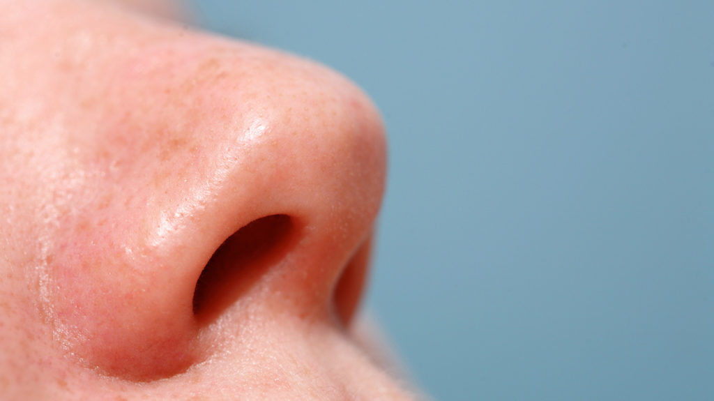 close up of a human nose
