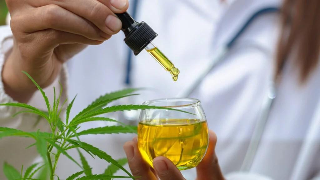 cbd oil vs cbn medicine from a glass bottle.