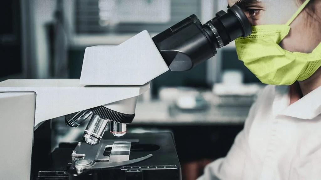 看通过显微镜,外形的科学家