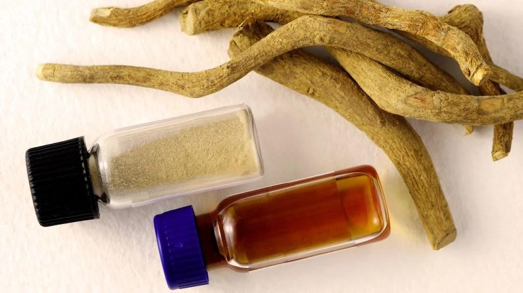 Understanding Ibogaine Treatment