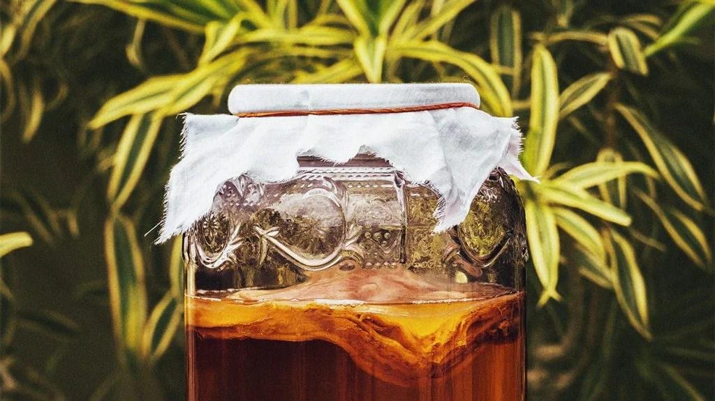 康普茶的副作用因其酿造方式而异
