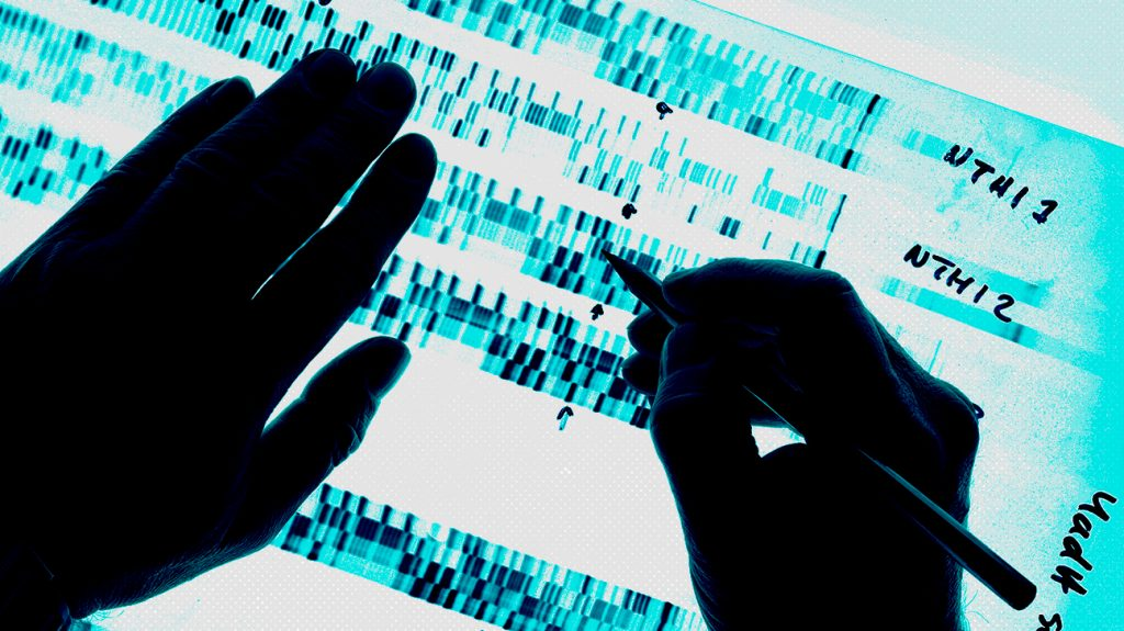 close up of hands checking DNA code