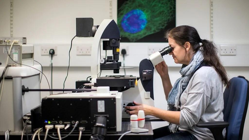在实验室里通过显微镜观察的科学家