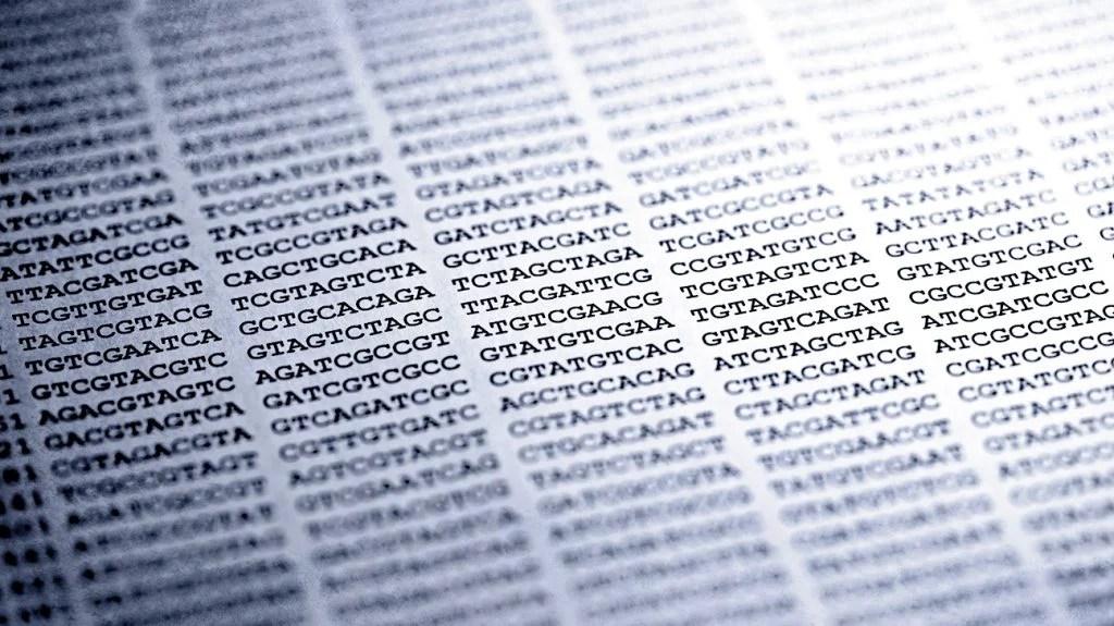 打印在纸上的遗传密码
