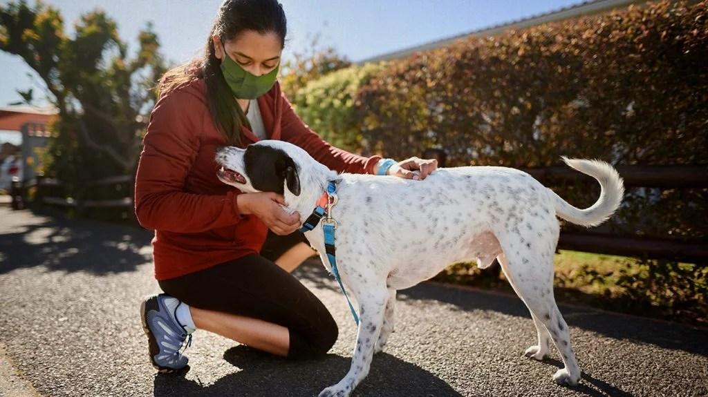 photo of woman wearing mask petting her dog