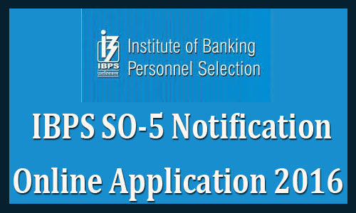 IBPS SO 2016 notification