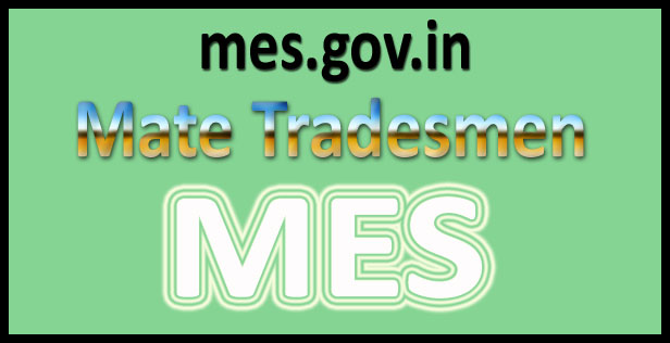 MES Mate Tradesmen Result 2016