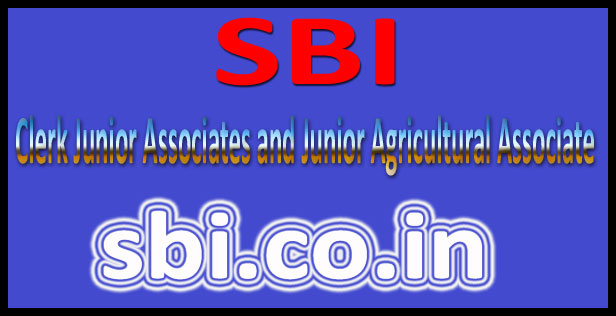 SBI Clerk Previous Year Paper