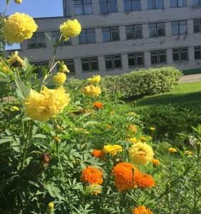 Начало августа — средняя школа №3 -2