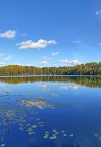 80 озер Поставского края